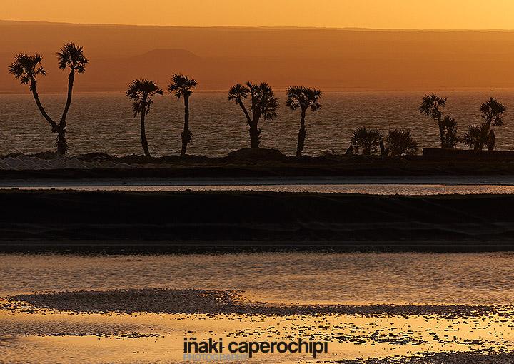 Salinas del lago Adfrera