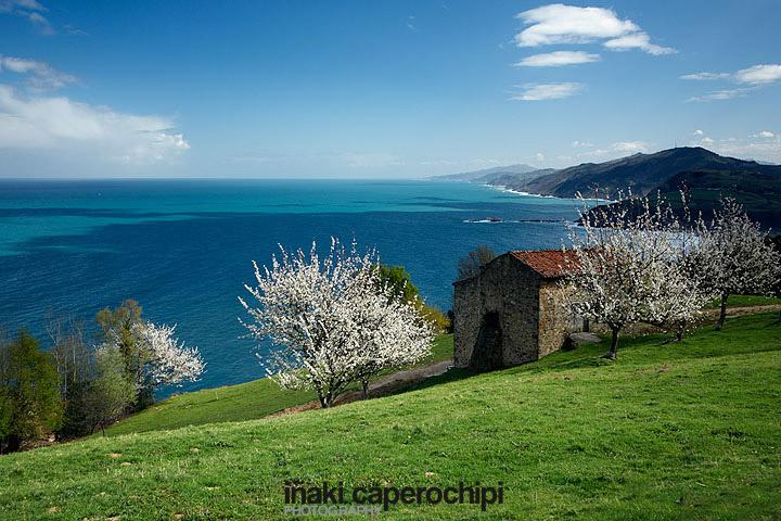Panoramica de la Cornisa Cantabrica en primavera