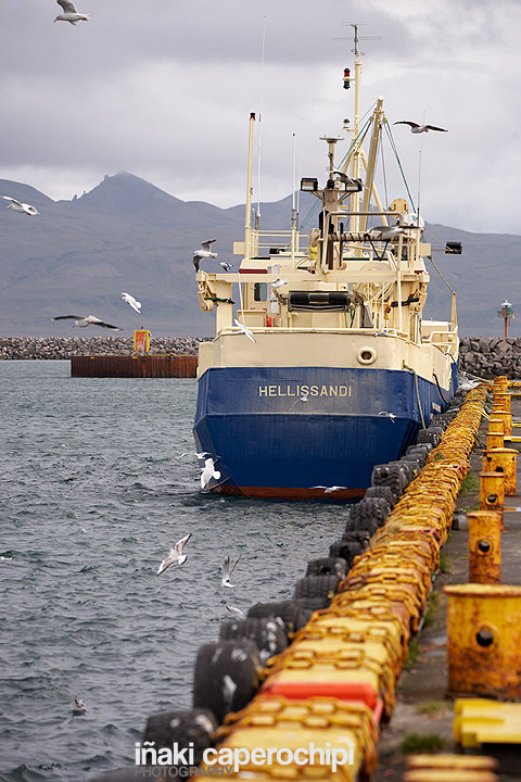 Puerto pesquero de Rif