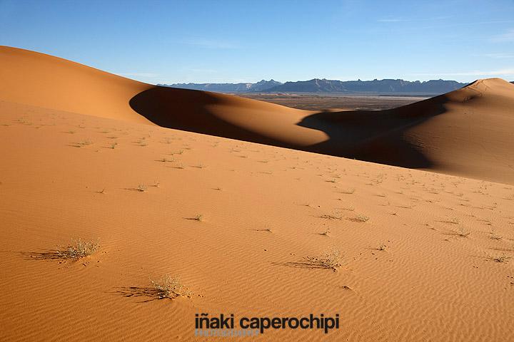 Wadi Tanezzouft. Desierto